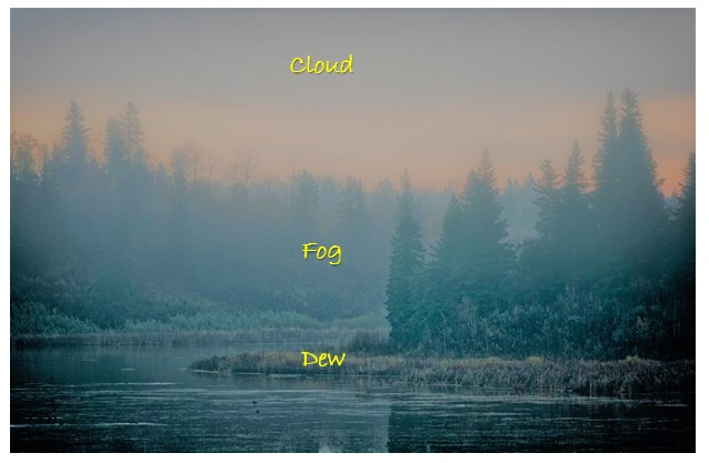 Cloud Fog Dew